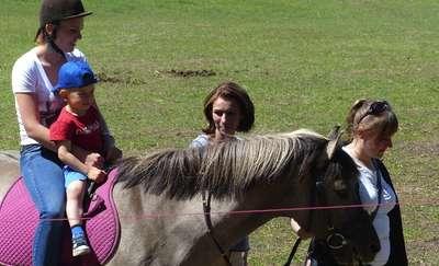 Koń o imieniu Da Grasso miał tego dnia swój debiut