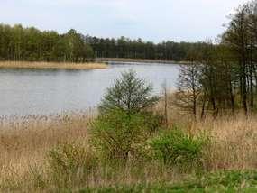 Jezioro Fręckie