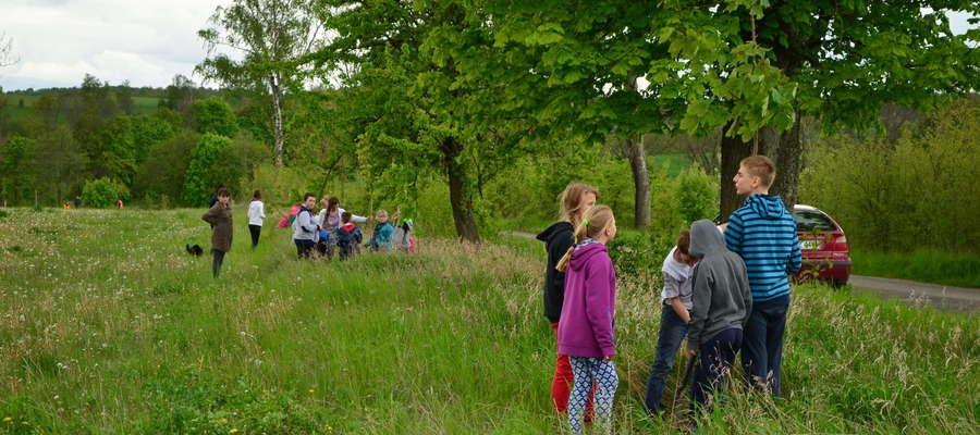 Posadzone przez uczniów z Legin drzewa będą rosły w bezpiecznej odległości od drogi
