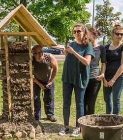 Studenci pomagają pszczołom