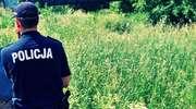 Żukowo Strusie - ukradli sprzęt do dojenia krów