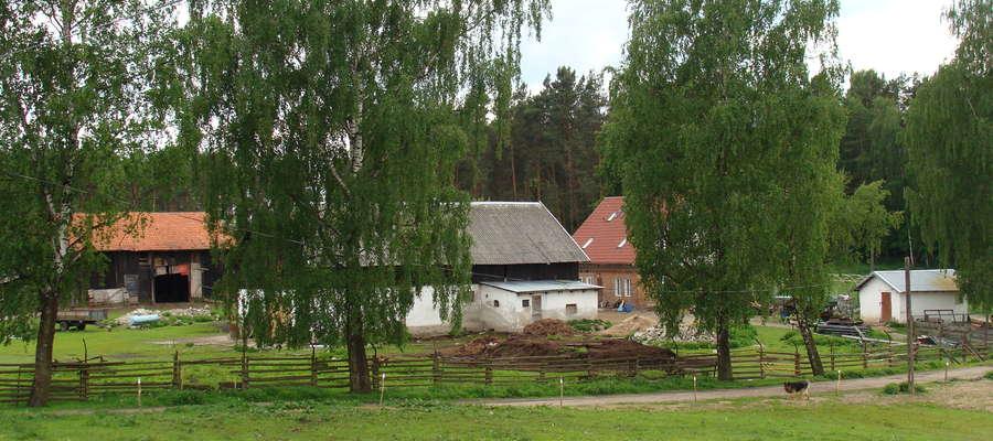 Rolnicy otrzymujący z tytułu płatności bezpośrednich nie więcej niż 1 250 euro na gospodarstwo zostaną włączeni do systemu automatycznie, chyba że nie wyrażą na to zgody