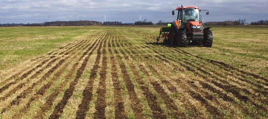Podsiew bezpośredni to tańszy sposób renowacji runi trwałych pastwisk. Można powtarzać go i jest dużo tańszy niż uprawa pełna. Umożliwia wprowadzanie najnowszych odmian roślin pastewnych, koniczyny białej i traw