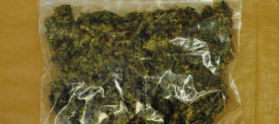 Zdjęcie jest ilustracją do tekstu.