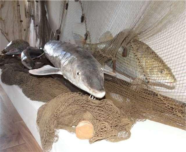 Grzmięca: Historia rybactwa i wędkarstwa na Pojezierzu Brodnickim - full image