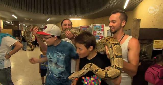 Prawie 900 osób spędziło noc z dzikimi zwierzętami w płockim ZOO - full image