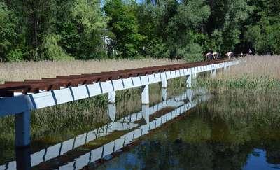 Wznowiono prace na długim moście w Olecku