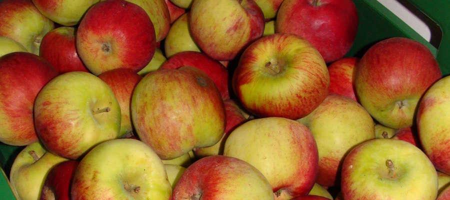 Ozon zalecany jest do stosowania w kontakcie z żywnością czy warzywami i owocami