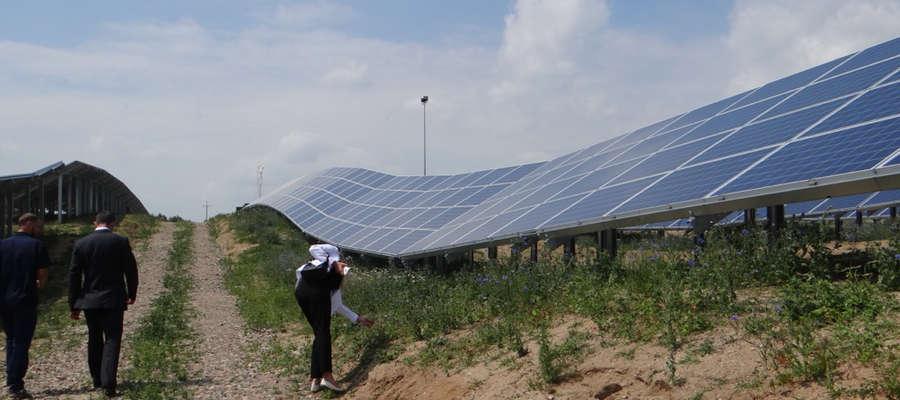 Przy budowie farmy fotowoltaicznej wykorzystano geofizyczne uwarunkowania pofałdowanego terenu, co jest niespotykane w skali naszego kraju