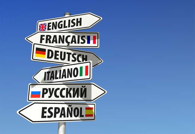 Kursy językowe — nie czekaj do września! - full image