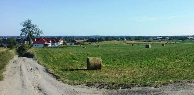 Widok na Szczęsne od strony Ostrzeszewa