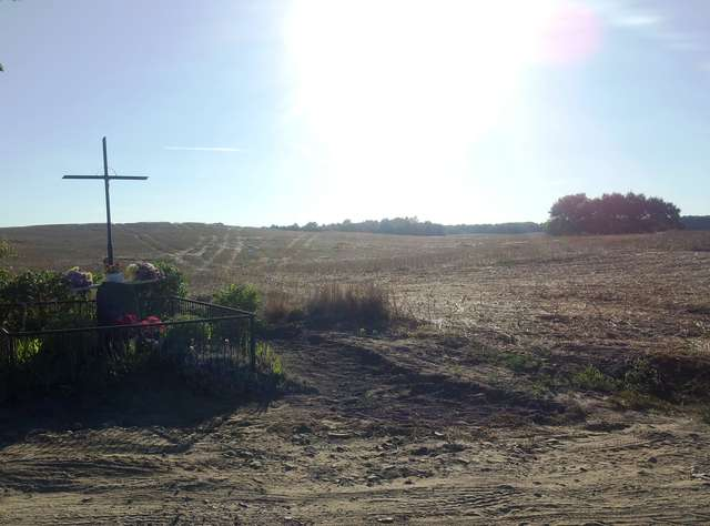 Przydrożny krzyż przy drodze Szczęsne-Linowo