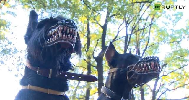 Kaganiec, który z Twojego psa zrobi prawdziwą bestię - full image