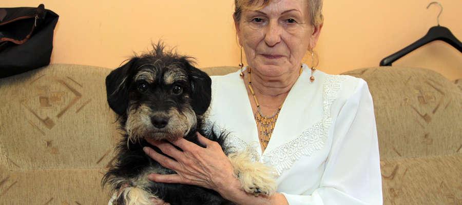 Pani Wiesława Tinę przygarnęła ze Schroniska dla Bezdomnych Zwierząt w Elblągu, gdy zmarła właścicielka pieska
