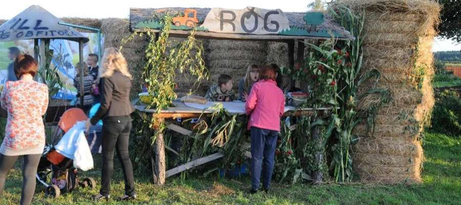 Na uczestników wakacyjnego festynu w Rogu czekać będzie wiele atrakcji