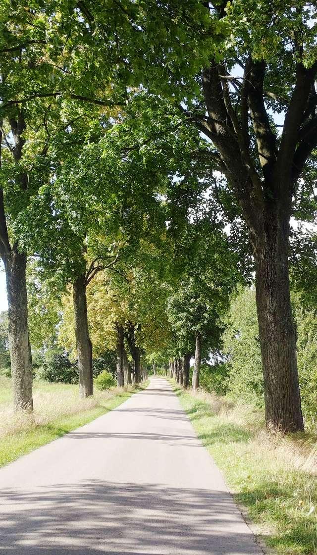 Droga Sętal-Nowe Włóki