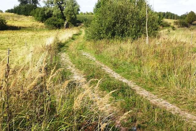 Zanikająca droga z Plutek w kierunku Podleśnej