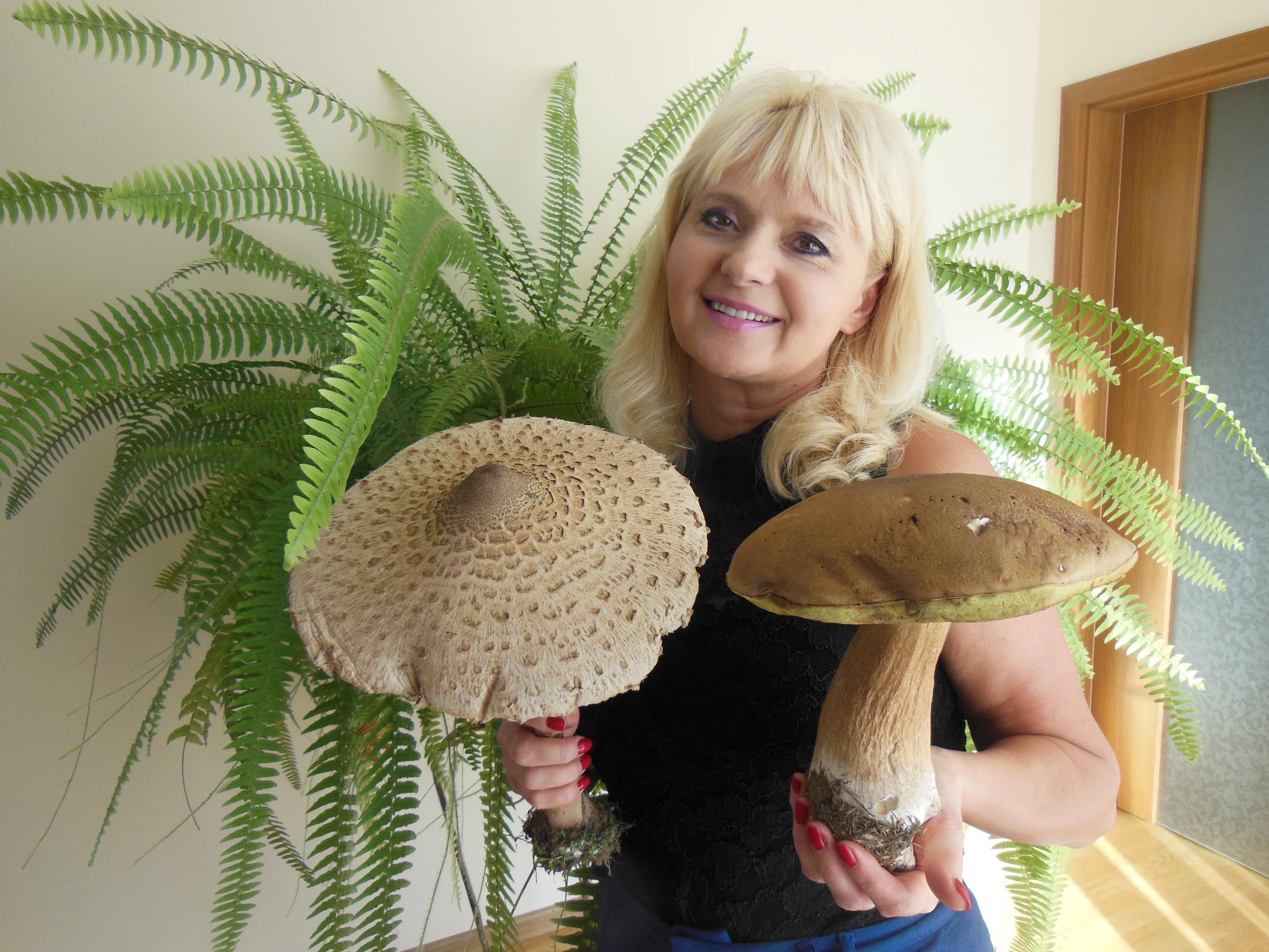 Takie grzyby rosną w Dorotowie