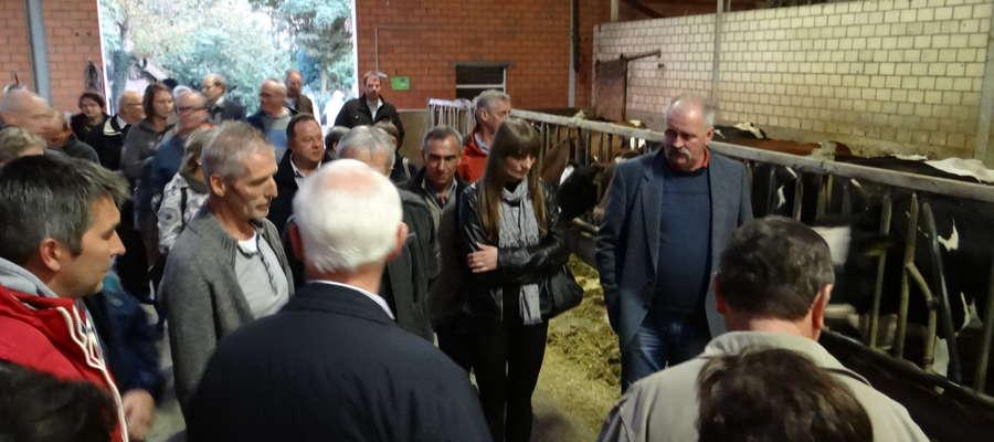 Zwiedzanie nowoczesnej obory na 300 krów