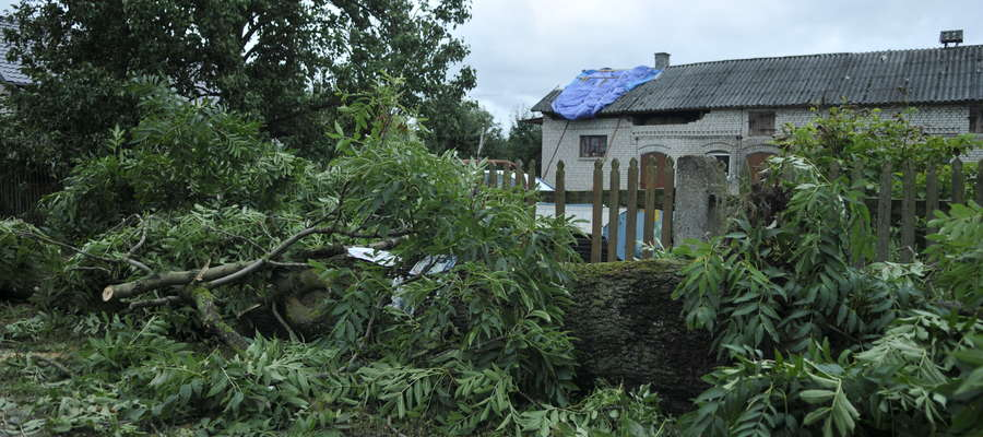 Wiatr łamał drzewa i zrywał dachy