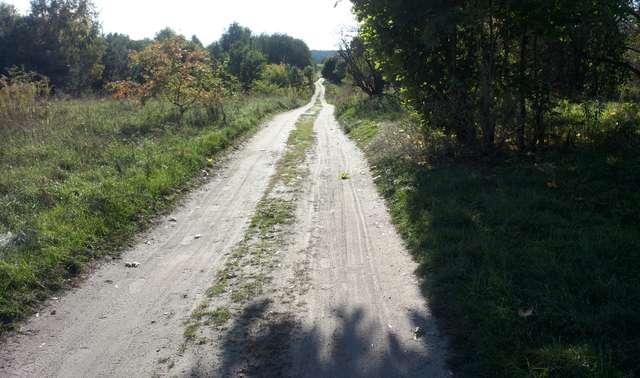 Droga biegnąca przy jeziorze Ukiel. Na mapach to ulica Kajakowa w Olsztynie