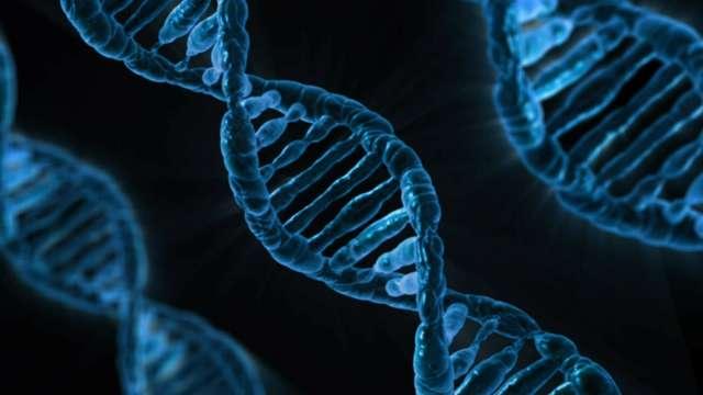 Przyznano Nobla z chemii. Laureaci wyjaśnili proces naprawy DNA - full image