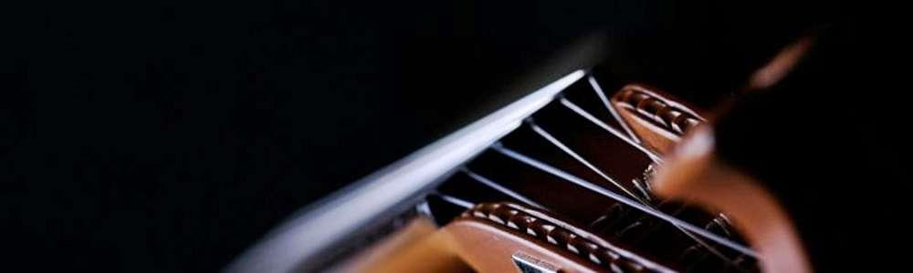 ŻelipapĄ w amfiteatrze zagra akordeonowe utwory