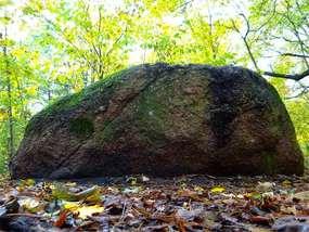 Kurzętnik: Zapomniany park podworski z pomnikowym głazem