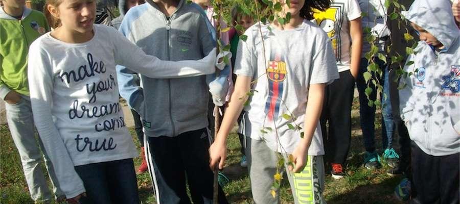 Przy szkole uczniowie zasadzili brzozę