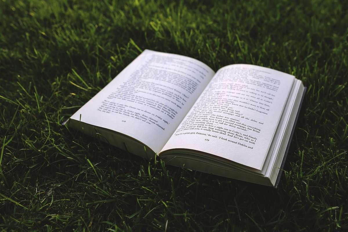 Więcej wydajemy na książki - full image