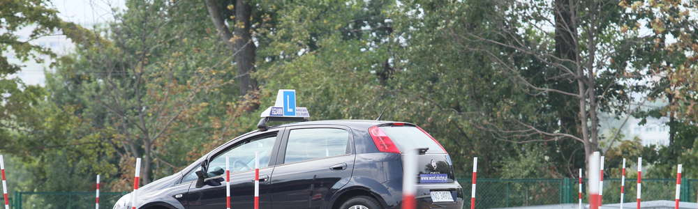 Przepisy znowelizowanej ustawy o kierujących miały wejść w życie 4 czerwca, ale... nie wejdą