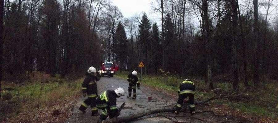 Strażacy z Galin interweniowali m.in. na drodze Galiny - Kosy
