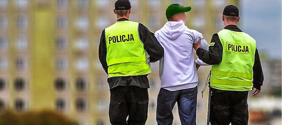 Zatrzymany przez policję 18-latek przyznał się do szeregu przestępstw, które popełnił na terenie Płońska