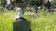 Cmentarz warmiński w Wipsowie