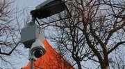 Jest monitoring w parku miejskim