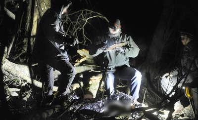 22-latek zginął przygnieciony przez drzewo w Biskupcu