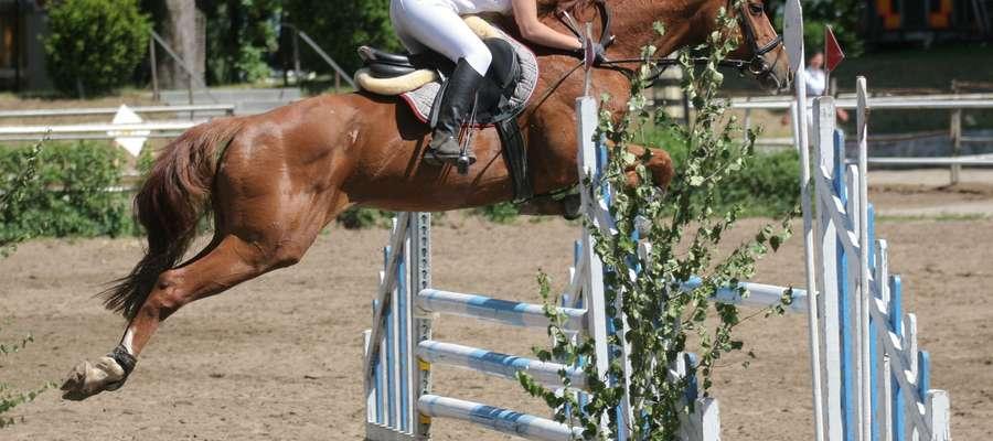 Zawody jeździeckie w Kortowie na dobre wrosły już w sportowy krajobraz Olsztyna.