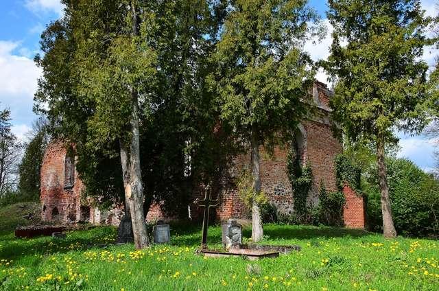 Osetnik: ruiny kościoła z XV wieku p.w. św. Jakuba Starszego - full image