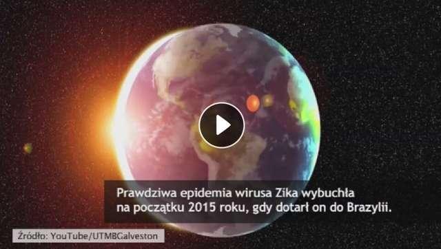 Amerykański naukowiec o epidemii Zika: Wirus powoduje dwie groźne choroby - full image