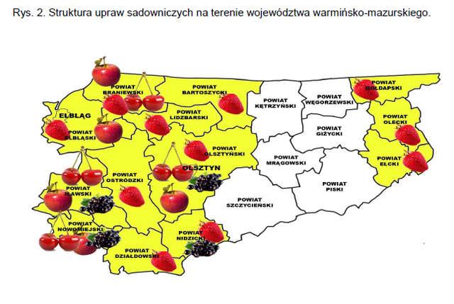 Struktura upraw sadowniczych na terenie województwa warmińsko-mazurskiego.