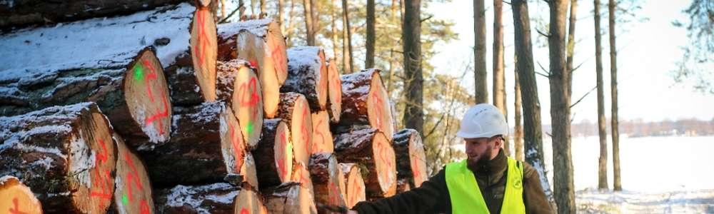 Nie ma, że zima. W lesie praca wre.