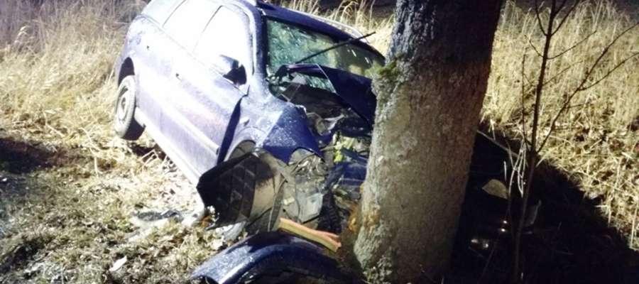 Opel uderzył w drzewo. Trzy osoby, w tym dziecko w szpitalu