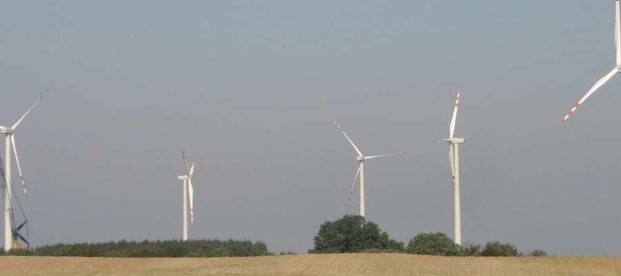 Charakterystyczne dla krajobrazu gminy Kisielice są niewątpliwie wiatraki