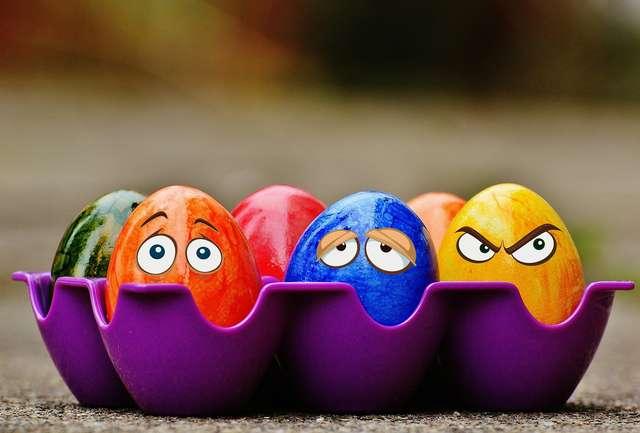 Jajko pełne inspiracji - full image