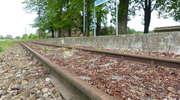 Szansa dla kolei nadzalewowej. Chcą ją przejąć Tolkmicko i Braniewo