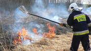 Strażacki tydzień. Plaga wypalania traw