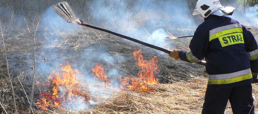 Jak co rok, wiosną strażacy często jeżdżą gasić pożary pozostałości roślinnych i suchych traw.