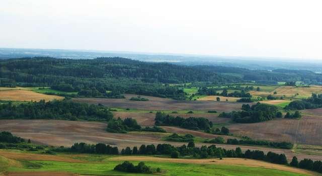 Krajobraz gminy Budry - full image