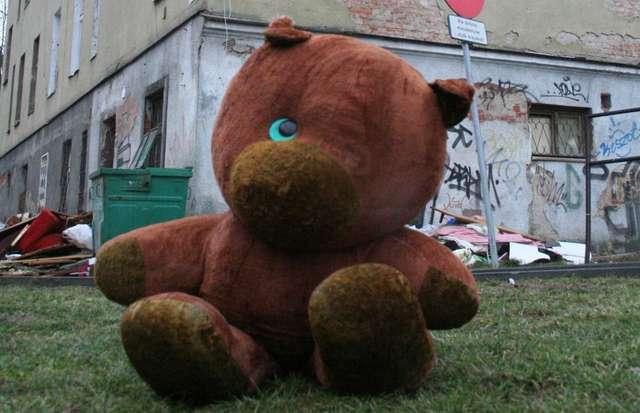 Krew, bandaże i... pluszaki. W sobotę happening na ulicach Olsztyna - full image