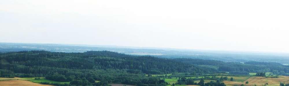Gmina Budry: Lasy Skaliskie